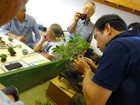 盆栽教室 (4).JPG