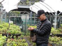 2013年4月21日日帰り盆栽園巡り 1 (4).JPG