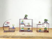 46回雅風展 (4).JPG