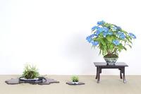 みなづき展 (6).JPG