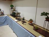 湘風園展示 会 (3).JPG