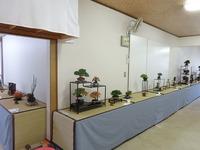 湘風園展示 会 (4).JPG